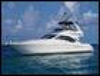 SEA RAY 455 DB